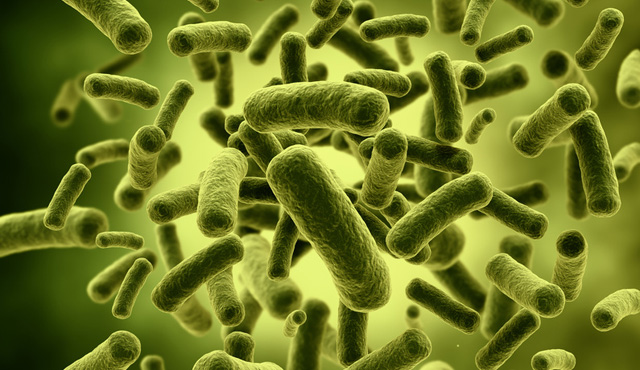 Microbiome studies in the medical sciences and the need for closer multidisciplinary interplay